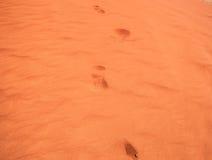 Footprints on desert sand Royalty Free Stock Image
