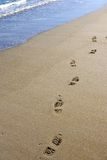 Footprints on deserted sandy beach Stock Images