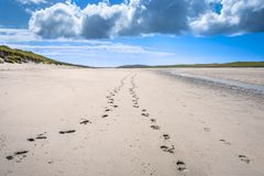 Footprints disappearing in the distance on the sandy beach. Traigh Iar, Isle of North Uist, Outer Hebrides, Scotland Royalty Free Stock Image