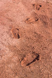 Footprints dried in the ground or on the ground.  Royalty Free Stock Images