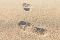 Footprints on the dry sand. Blurred image. Stock Photo