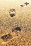 Footprints on the dry sand. Blurred image. Stock Photography
