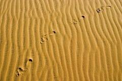 Footprints on dune. Man's footprints on dune Stock Photo