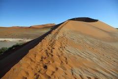 Footprints on the dune Stock Photos