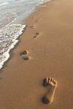 Footprints. Ephemeral footprints in the sand Stock Images