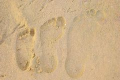 Footprints. The family left their footprints in the sand Stock Photos