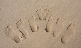 Footprints of a family in the sand on beach royalty free stock photo