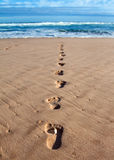 Footprints with feather in wet sand Royalty Free Stock Photos