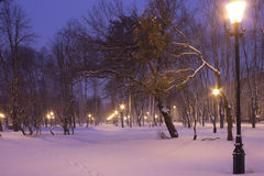 Footprints in the fresh snow in a city park in the blue hour in Stock Photography