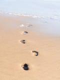 Footprints going into the sea Stock Photos