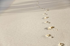 Footprints on golden beach sand Stock Photos