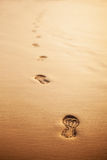 Footprints in the golden sand Stock Images