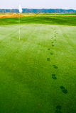 Footprints on golf grass near flag in dew. Footprints on golf grass in dew near flag at morning Royalty Free Stock Photos