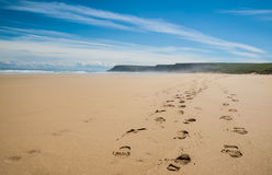 Footprints of hiking boots on the sand of a remote beach Stock Photography