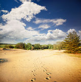 Footprints in the hot sand in the desert Royalty Free Stock Image
