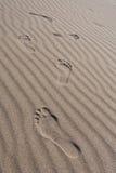 Footprints. Stock Photos