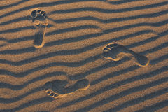 Footprints. Royalty Free Stock Images