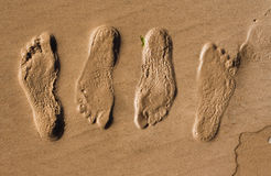 Free Footprints In Sand Royalty Free Stock Photography - 17926107