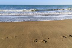 Free Footprints In The Sand Royalty Free Stock Photos - 110493288