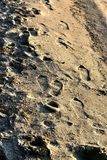 Footprints of a man leaving in the distance on the wet sand stock image