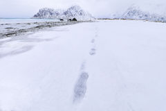 Footprints of a man on the snow of a Norwegian beach. Royalty Free Stock Images