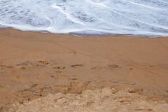 EDGE OF WAVE ON WET SAND ON BEACH. Footprints on the margin of wet sand on the beach with shallow wave beyond Royalty Free Stock Photos