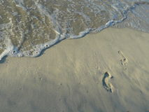 Footprints by ocean Royalty Free Stock Image