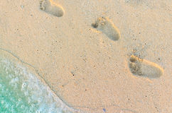 Free Footprints Of Baby On The Sand Royalty Free Stock Images - 93012509