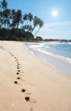 Footprints on paradise beach Royalty Free Stock Photos