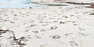 Footprints Stock Photo