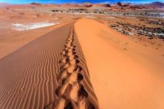 Footprints in the ridge of sand dunes in Moroccan Sahara desert Stock Photos