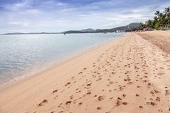 Footprints at Samui Island Beach. Footprints on the beach at The Samui Island, Thailand in the morning Royalty Free Stock Image