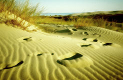 Footprints in the sand. Olded & blured royalty free stock images
