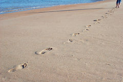 Footprints in the sand. On the beach Stock Images