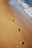 Footprints in the sand. Footprints walking along a sandy beach Royalty Free Stock Photography