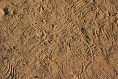 Footprints sand Royalty Free Stock Photography