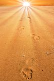 Footprints on a sand Royalty Free Stock Photo