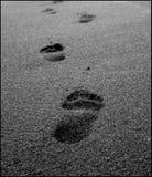 Footprints in sand. Taken at Punalu'u beach,HI Royalty Free Stock Photography