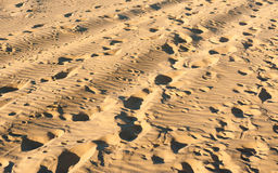 Footprints on sand Stock Images