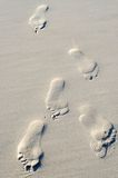 Footprints in the sand. Deep footprints in the sand on the beach Royalty Free Stock Images