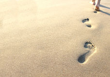 Footprints in the sand. On the beach stock photo