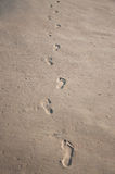 Footprints on sand. Row of human footprints on wet shelly sand Stock Photo