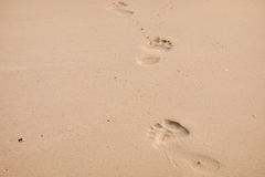 Footprints in the sand. A photo of footprints in the sand Stock Photography