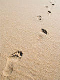 Footprints on sand Stock Photos