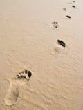 Footprints on sand. At a desert beach Stock Photos