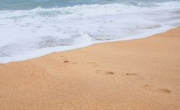 Footprints on the sand. Leading to the ocean Stock Photo