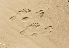 Footprints on the sand Royalty Free Stock Photo