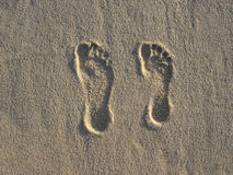 Footprints in the sand. A couple's footprints in the sand stock image