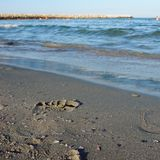 Footprints. In sand Stock Photography
