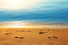 Footprints on sand along sea at dawn Royalty Free Stock Photography